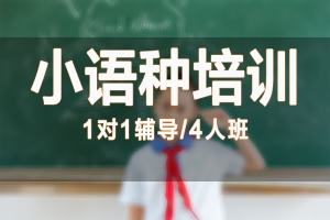 小语种辅导培训
